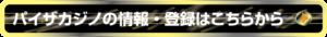 情報・登録はパイザカジノの公式ホームページで